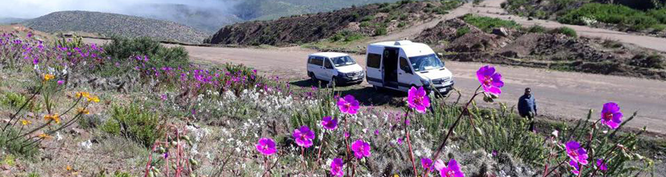 ¿Cuáles son las claves para tener una empresa de turismo en Chile?