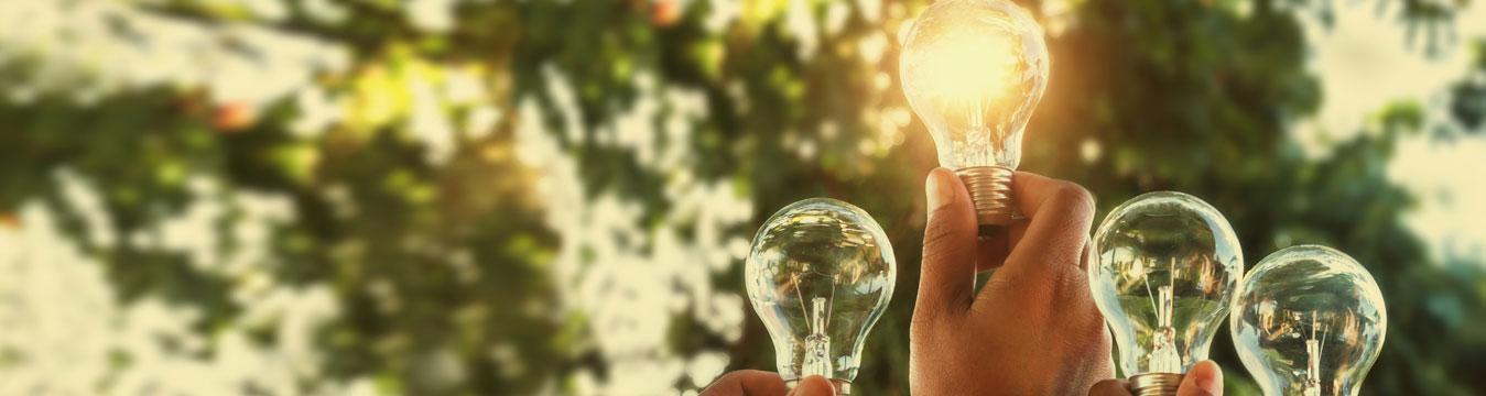 Fondo CLIN: US$18 millones para emprendimientos sustentables