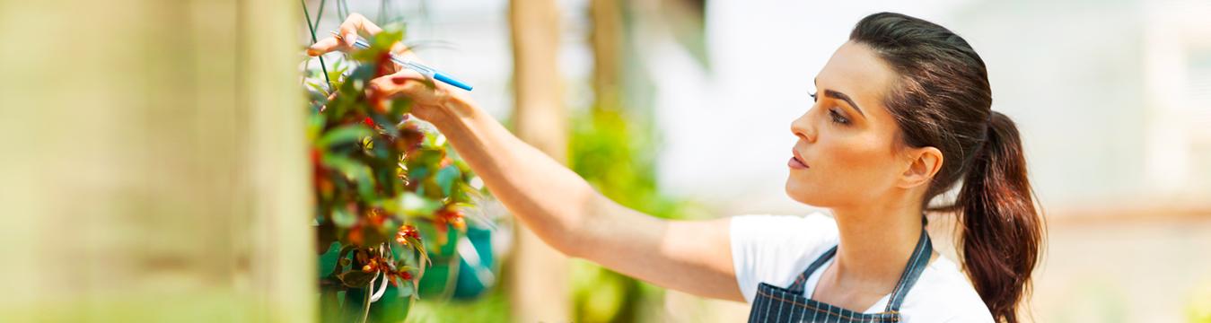 10 tips para conseguir el nombre perfecto de tu Pyme
