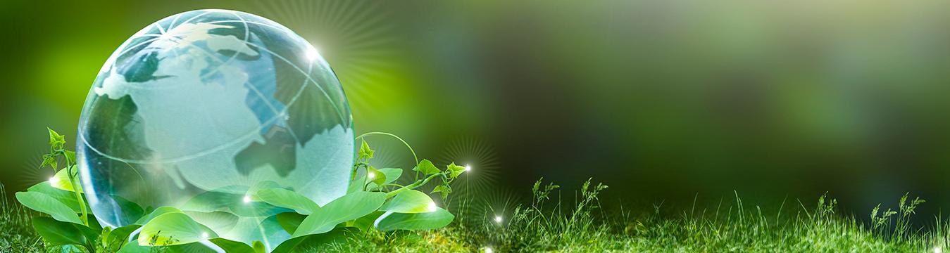 Financiamiento para Pymes que combatan el cambio climático