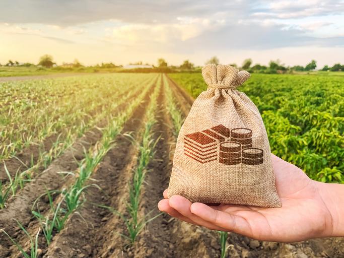 Corfo financiará proyectos de riego en apoyo al rubro agrícola