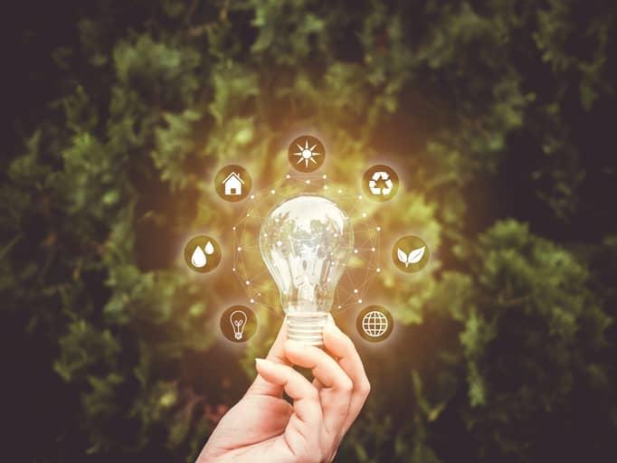 Emprendimientos innovadores y sostenibles